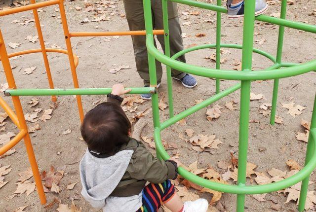 ジャングルジムで遊ぶ子供たち