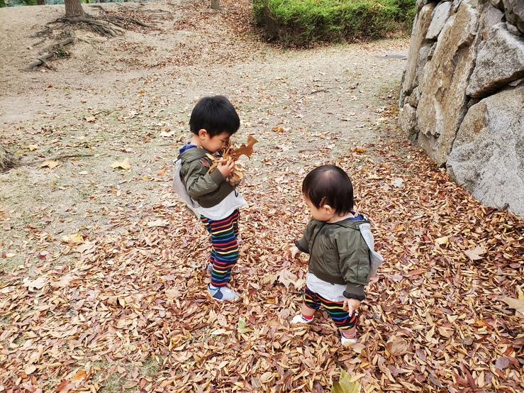 落ち葉で遊ぶ子供たち