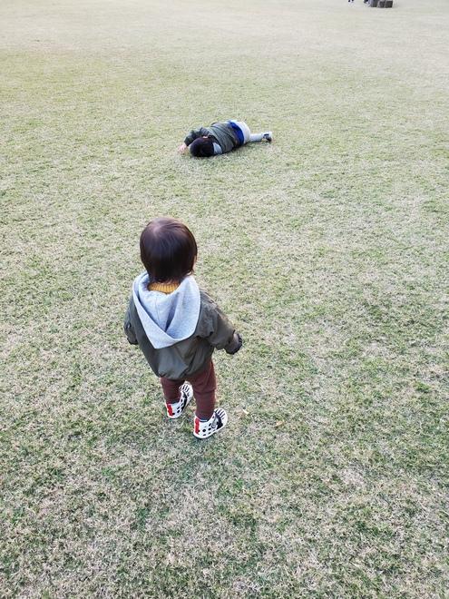 芝生でころころ