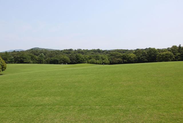 広い芝生広場