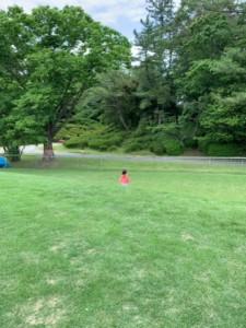 愛知県森林公園 芝生広場