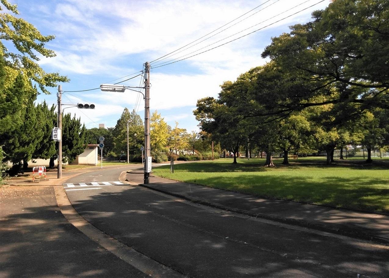 公園内の道路