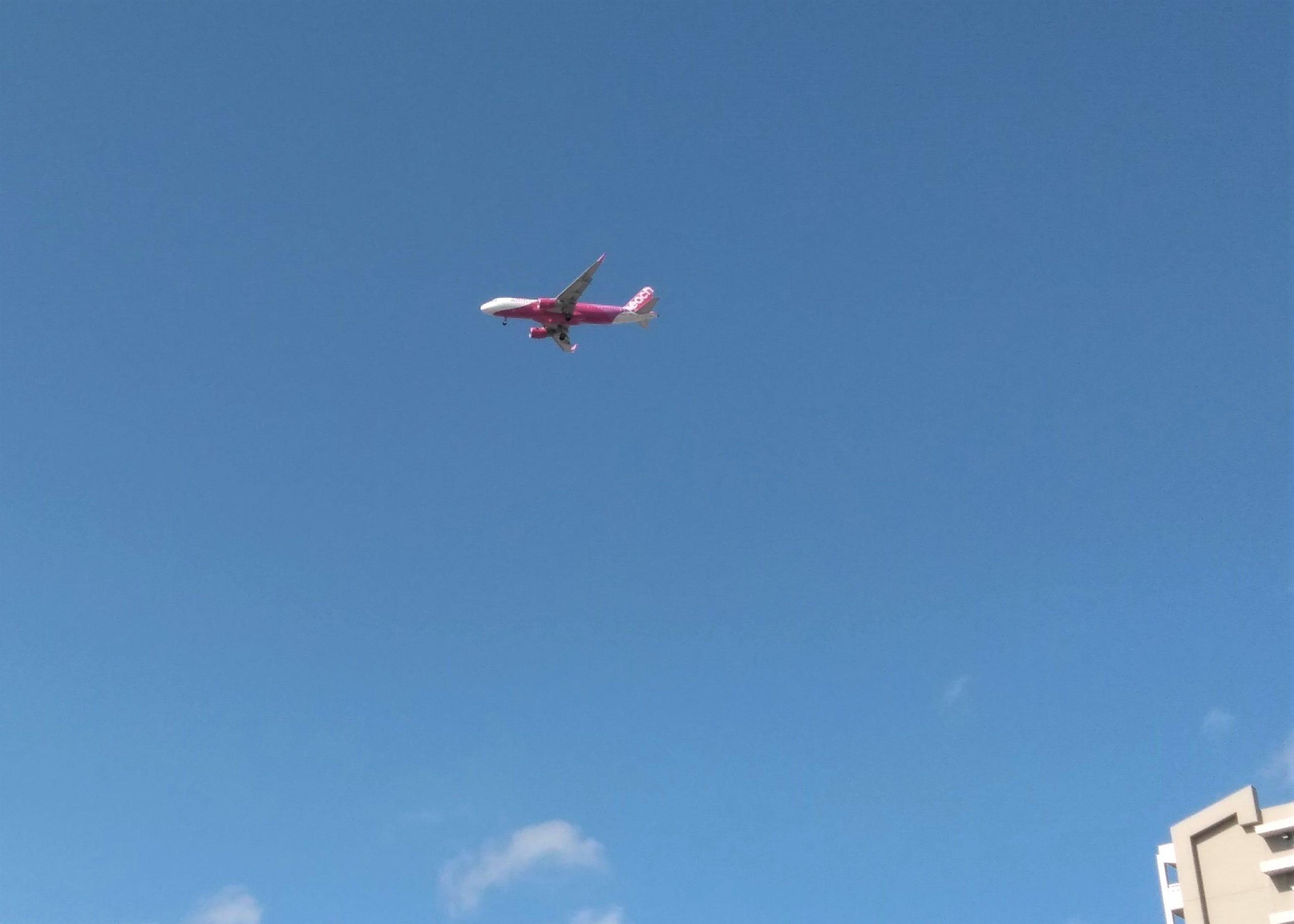本物飛行機
